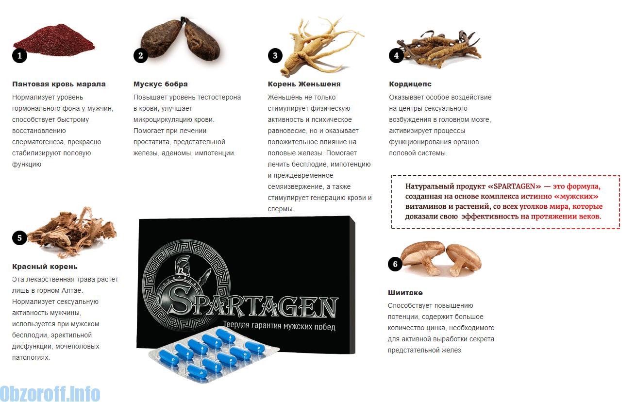 mézes gyógyszerek az erekció fokozására pénisz az irodalomban