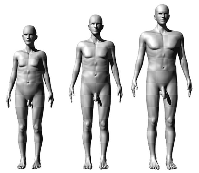 miért nincs megfelelő merevedés hogyan lehet csökkenteni az erekciót a műtét után