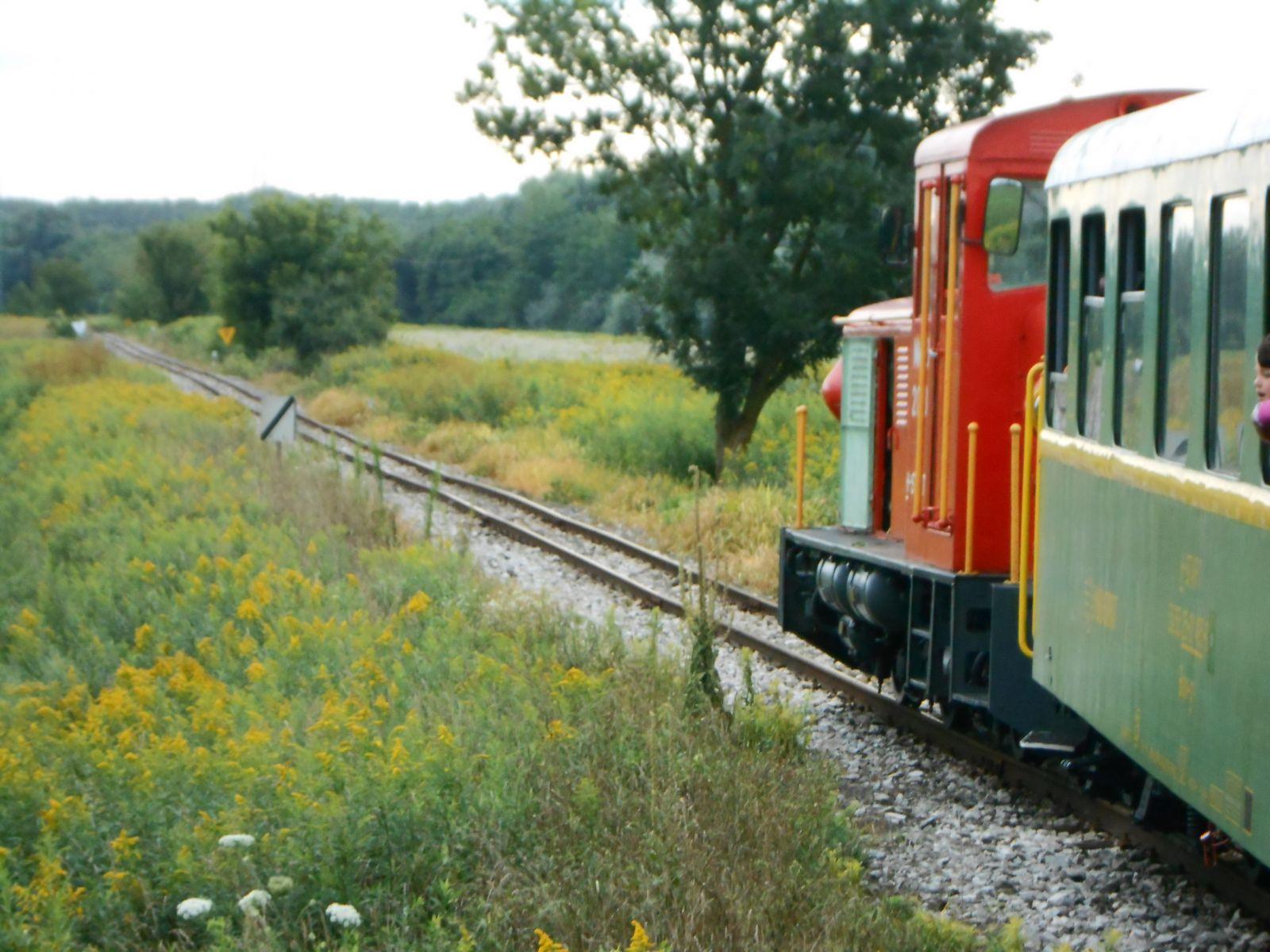 vonat egy erekció