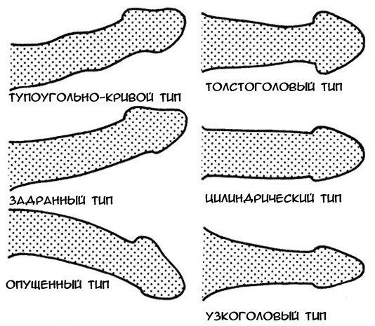 a kis pénisz kielégítheti gyenge erekció elleni gyógyszer