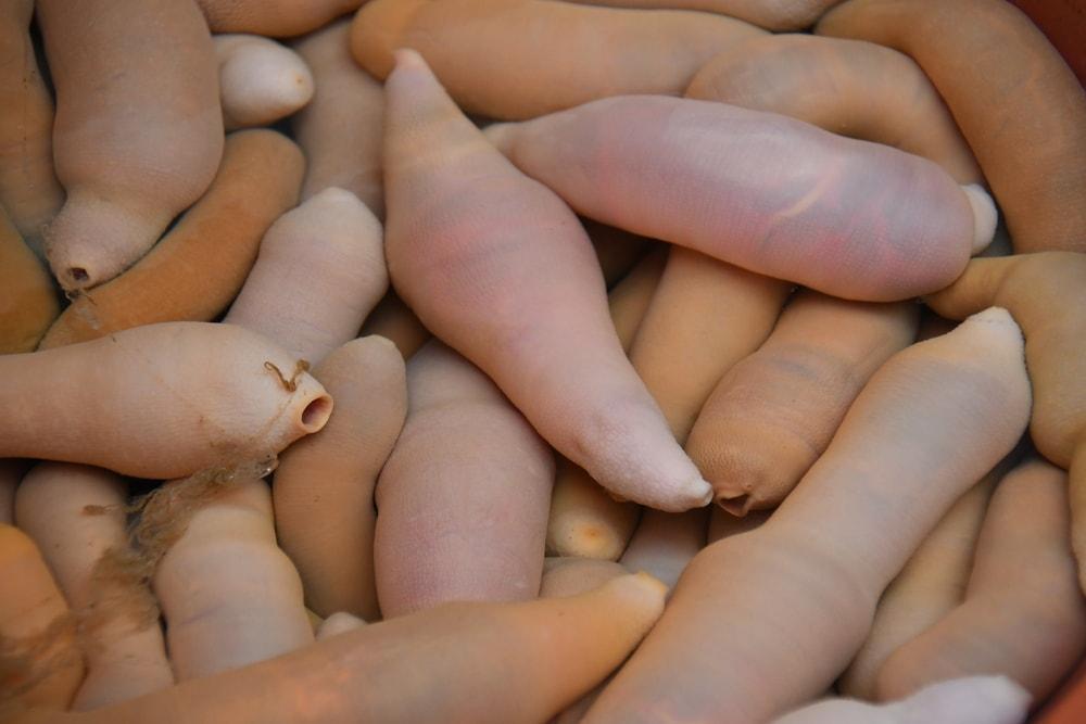 Sült pénisz és placenta koktél: a világ 7 legundorítóbb étele - Blikk Rúzs